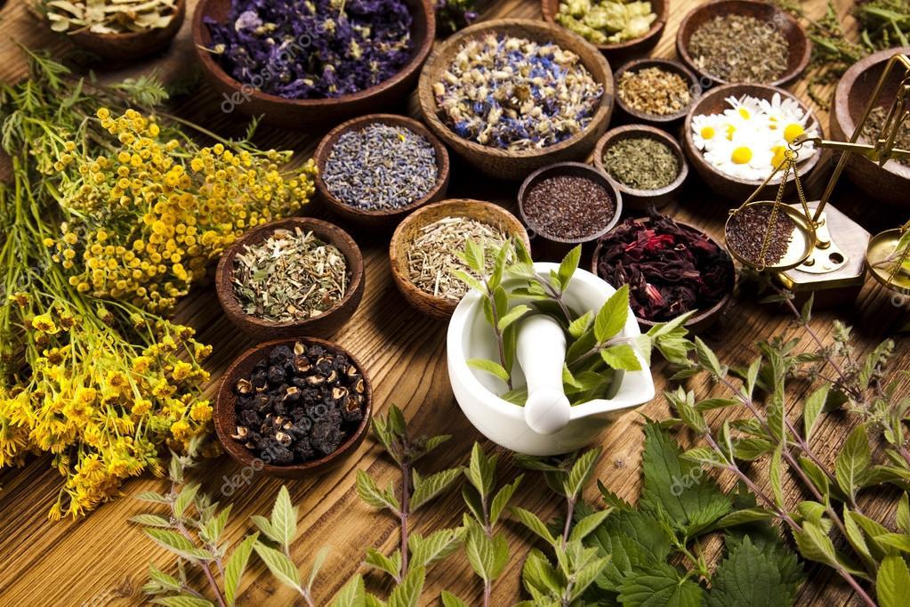 Духовные практики в работе с растениями (13-14 апреля)